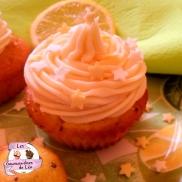 Cupcake Citron Pavot 6 XL