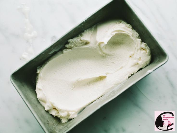 #yaourtglacé #froyo #frozenyogurt #glace #light #yaourt #yaourtalagrecque #greekyogurt #honey #faitmaison #homemade