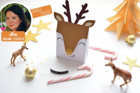 truffes, truffes chocolat, gourmandises sucrées, noël, tradition, chocolat, cacao, cadeau gourmand, emballage déco, idée emballage fêtes, emballage cadeau, DIY